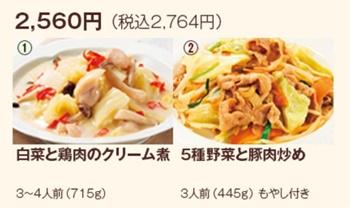 白菜と鶏肉のクリーム煮、5種野菜と豚肉炒め